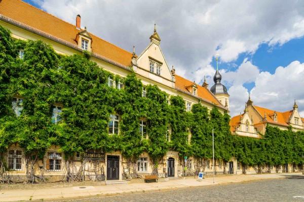 Wandbild Riesa - Der Rathausplatz (Motiv DMRIE46)