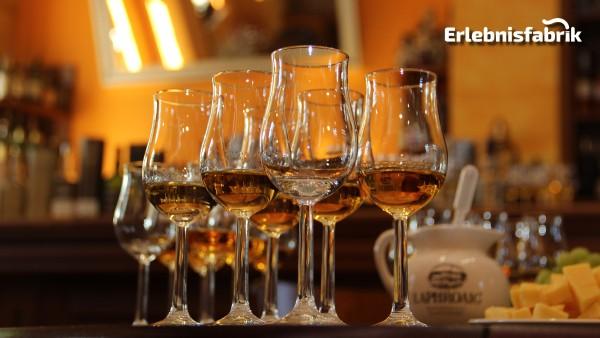 Whisky Tasting in Dresden