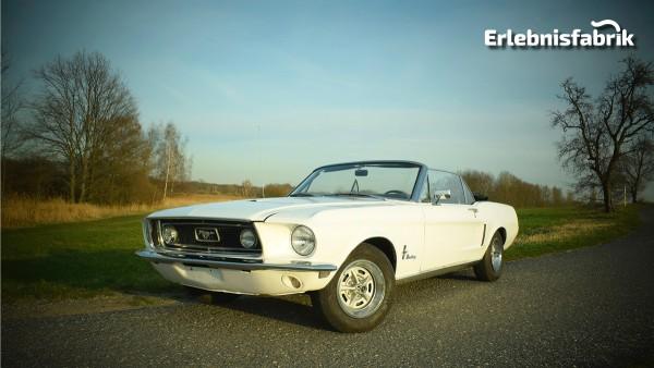 Ford Mustang Cabrio fahren bei Dresden