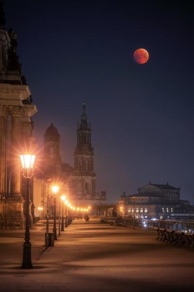 Wandbild Dresden (Motiv 00662)